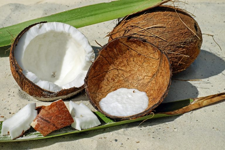 Caprylsäure kommt in der Kokosnuss vor