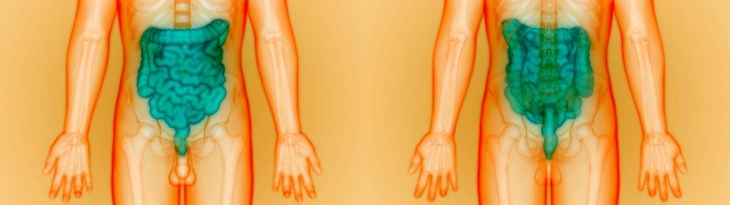 Magen-Darm-Infektion